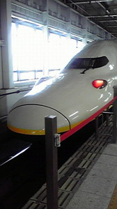2009846_050